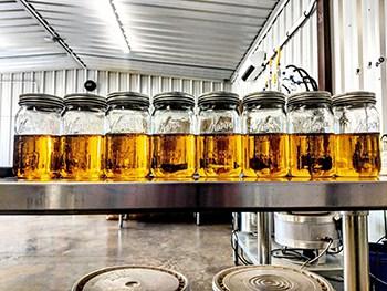 CBD Isolate, Distillate, T-Free, Crude - Wholesale CBD